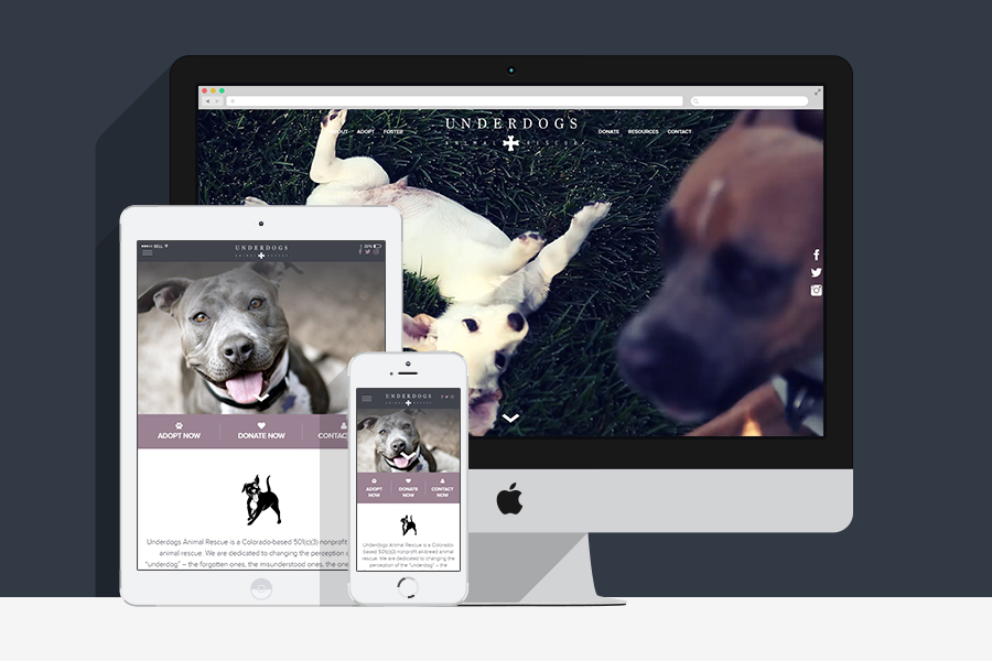 Underdogs Rescue - Custom Web Development-2